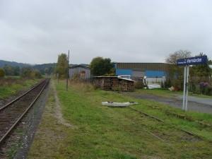 Die Bahnhaltestelle Viermünden, links das Durchgangsgleis, auf dem sonntäglich Sonderfahrten bis Herzhausen (Edersee) abgewickelt werden. Rechts noch das vorhandene Begegnungsgleis aus vergangener Zeit, welches nun auch wieder reaktiviert werden soll.