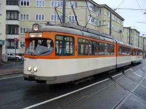 DSC09324 klein 600