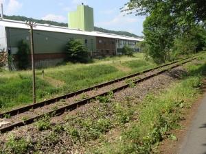 Von Verein Dietzhölztalbahn e.V. freigeschrittener Abschnitt der Bahntrasse im Bereich Dillenburg, Industriegebiet Kasseler Straße.